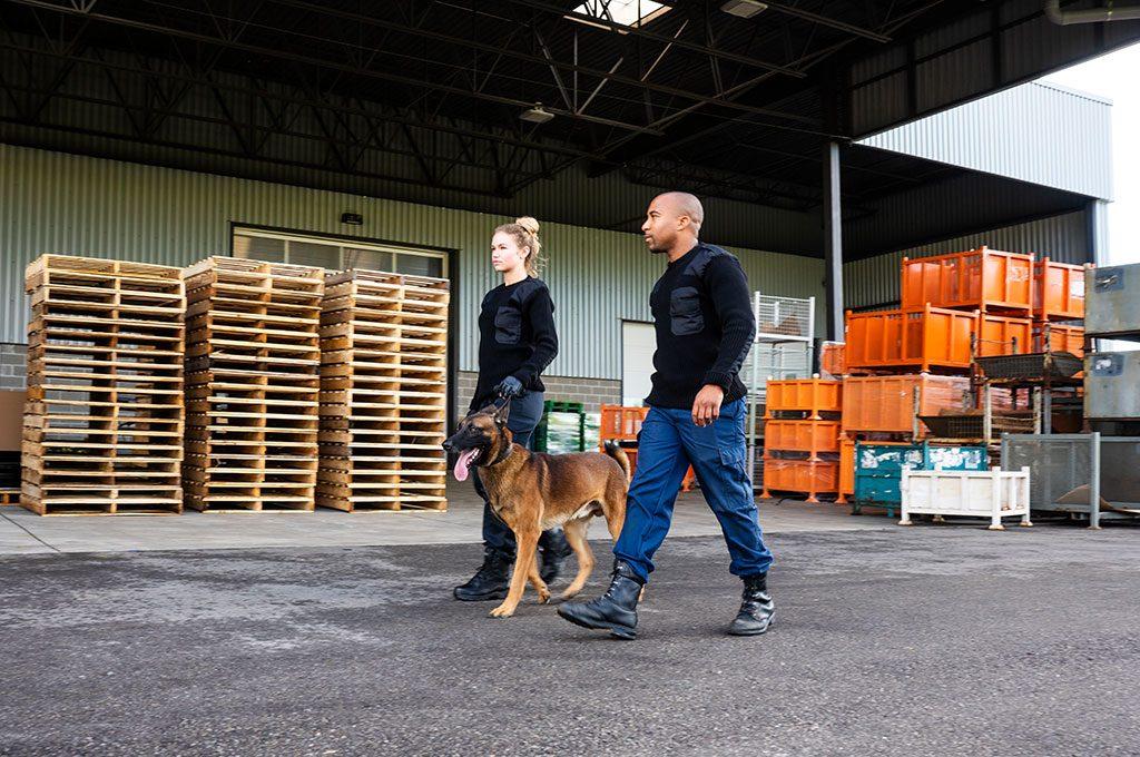 Security Sicherheitsdienst für Werkschutz und Diebstahlschutz